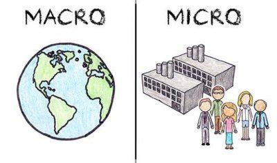 Microconceptos y macroconceptos que son
